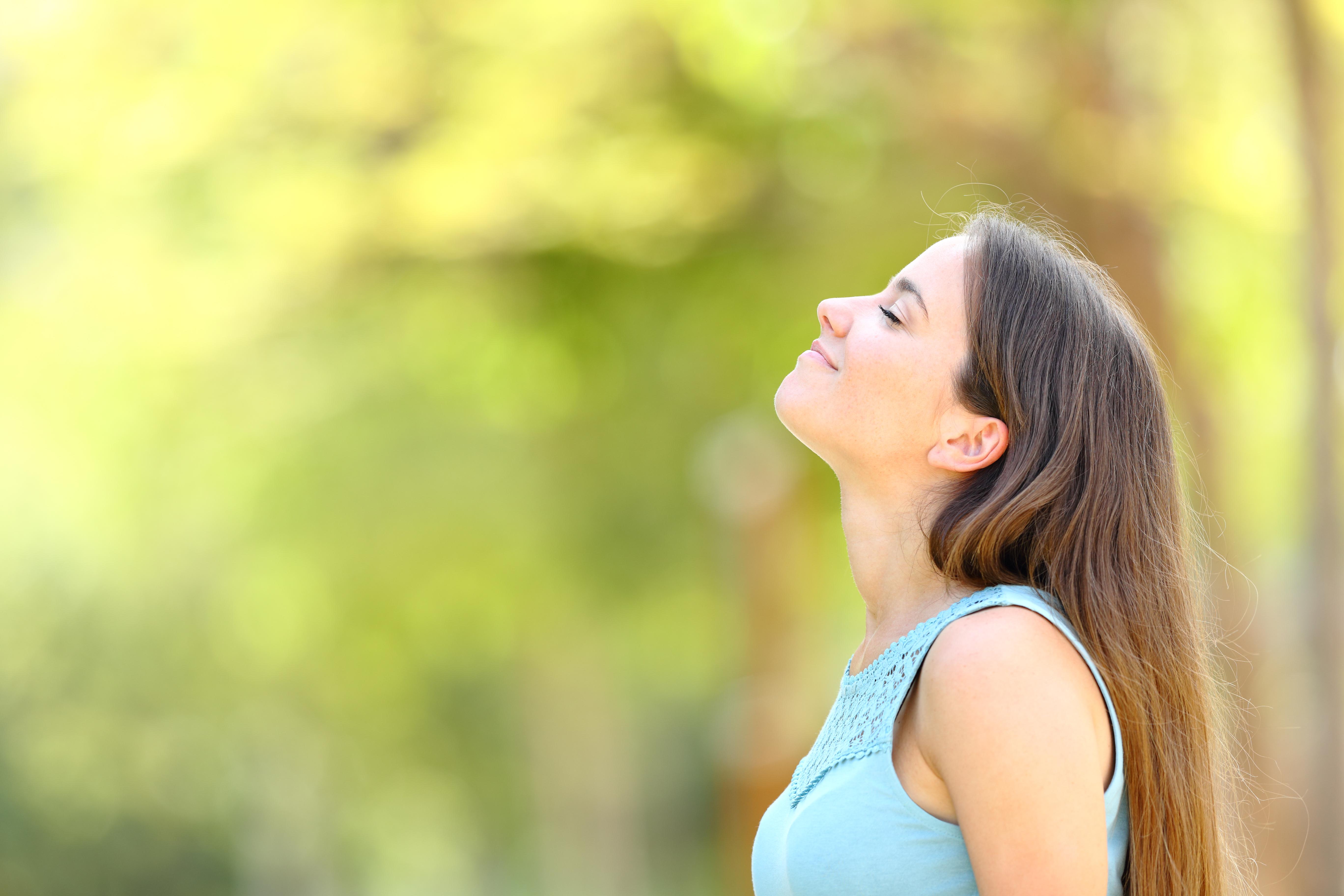 El funcionamiento de la respiración